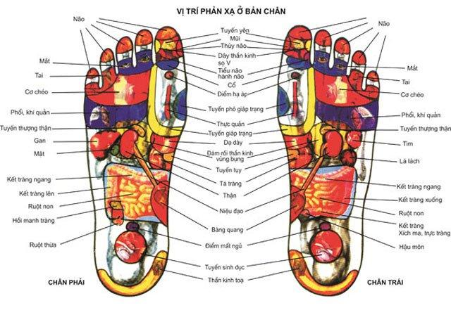 dép massage chân trị bệnh - dép massage khảm đá hay còn gọi là dép massage huyệt bàn chân - dép massage bàn chân